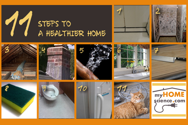 11 Steps to a Healthier Home