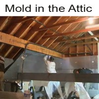 air sealing attic mold prevention