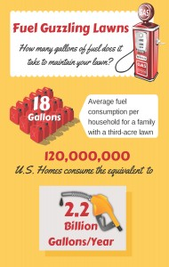 Lawn fuel consumption in the US